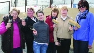 Part of the Brothers of Charity, Newcastle West, underwent a makeover last Thursday morning when twelve ladies stepped in and voluntarily painted some of the external and perimeter walls. It...