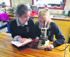 St Mary's students Caoimhe Cronin and Shauna Murphy working on their project for the Young Scientist Exhibition.