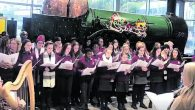 Davis College School Choir was honoured to be chosen to perform at the launch of the Focus Ireland Christmas campaign in Cork's Kent Station on Thursday last. The charity shop […]